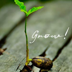 Grow! Grow!